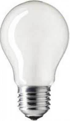 60W 110V PEARL ES LAMP