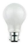 25W 240V PEARL BC GLS LAMP