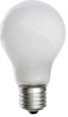 25W 240V PEARL ES GLS LAMP