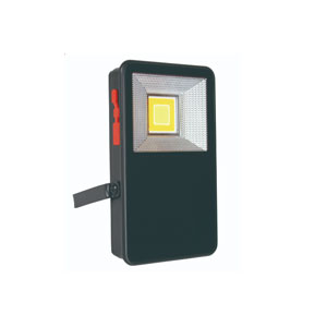 5WATT LED WORKLIGHT WITH CASE