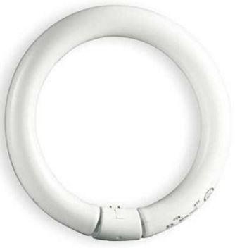 Tube Fluorescent Circular 34.1mm