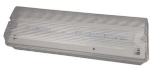 LED MAINTAINED IP65  BULKHEAD 4.5w